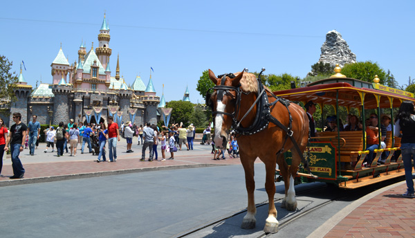 Main Street Transportation Company Show