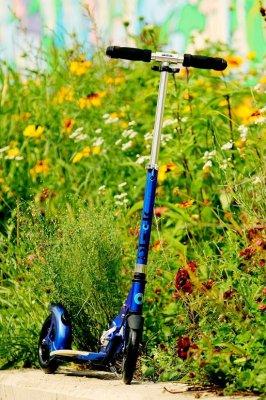 Blue Flex Scooter from Kickboard USA