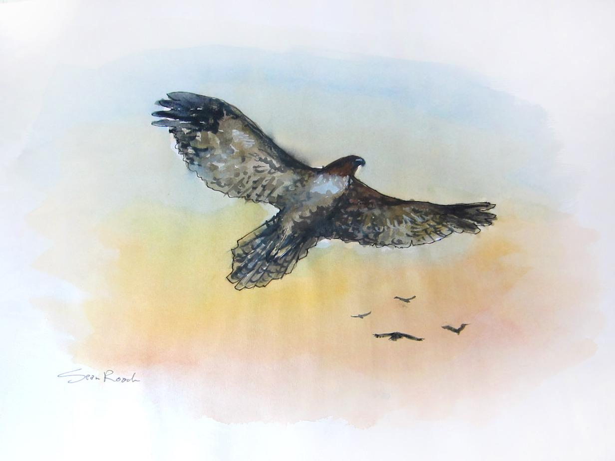Win Drawings from Artist Sean Roach
