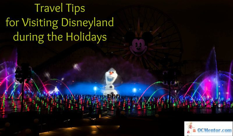 Want to make sure your visit to Disneyland Park during the Holidays is the best it can be? Follow these travel tips and you will do just fine.