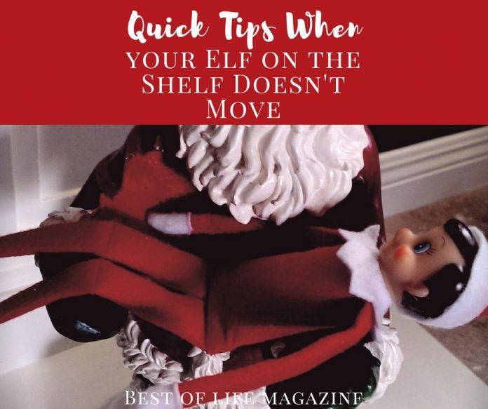 No matter how much we try, we all need these quick tips for when our Elf on the Shelf didn't move or when someone touches the Elf on the Shelf! Elf on the Shelf Touched   Elf on the Shelf Didn't Move   Elf on the Shelf Recovery Tips