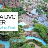 Being a Disney Vacation Club Member - What you Need to Know