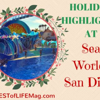 Holiday Highlights at Sea World San Diego