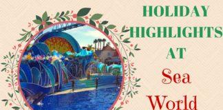 Holiday Highlights at Sea World San Diego