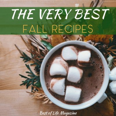 Fall weather is perfect for sipping cider by the fire and enjoying fall recipes like dips, drinks, breakfast, smoothies, and more with family and friends! Dip Recipes | Cider Recipes | Fall Drink Recipes | Breakfast Recipes | Recipes for Entertaining | Thanksgiving Recipes