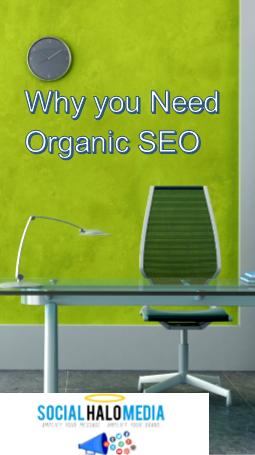 Why You need Organic SEO