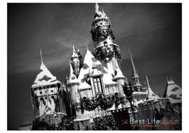 Disneyland Kick-off Party