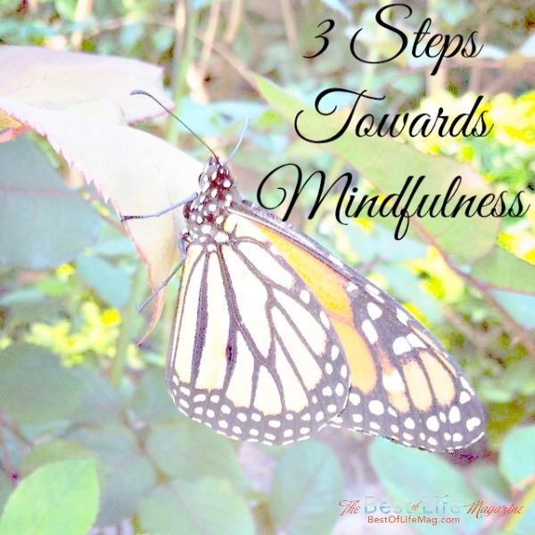 3 Steps Towards Mindfulness