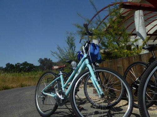 Bicycle tour in Napa California