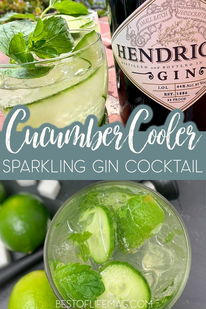 A cucumber cooler with gin is the perfect refreshing cocktail recipe! This low cal gin cocktail is light and delicious! Cocktails with Gin | Gin Cocktail Recipes | Gin Summer Cocktails | Summer Drinks for Adults | Cocktail Recipes | Drink Recipes with Gin| Cucumber Cooler Cocktails #gincocktail #cocktailrecipe via @amybarseghian