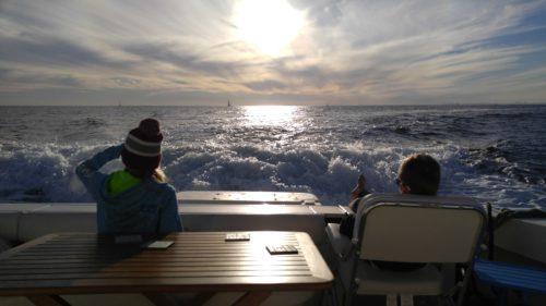 Newport Harbor Views