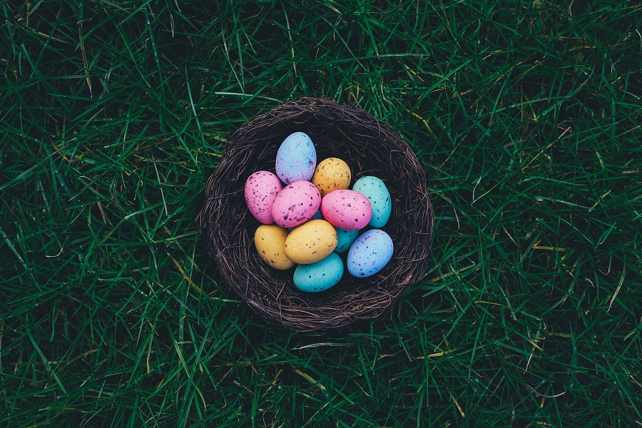 Easter Treats Nest in Some Grass with Colorful Eggs Inside