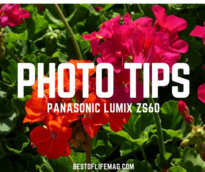 Using a few good Panasonic Lumix ZS60 camera photography tips will take your photography to a new level. Find them and try them here!