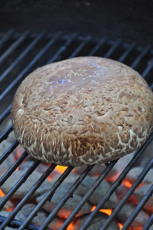 Portobello Mushroom Burger with tomatoes