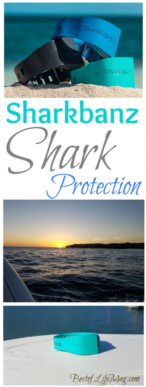 Sharkbanz protect you from sharks and reduce the risk of an attack so you can focus on what matters like enjoying the ocean and nature!