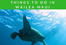 Add these 25+ fun and exciting things to do in Wailea Maui to your travel plans! They make for a perfect Hawaii vacation any time of year. Things to do in Hawaii | Things to do in Maui | Traveling to Hawaii | What to Do in Maui | Wailea Travel Tips