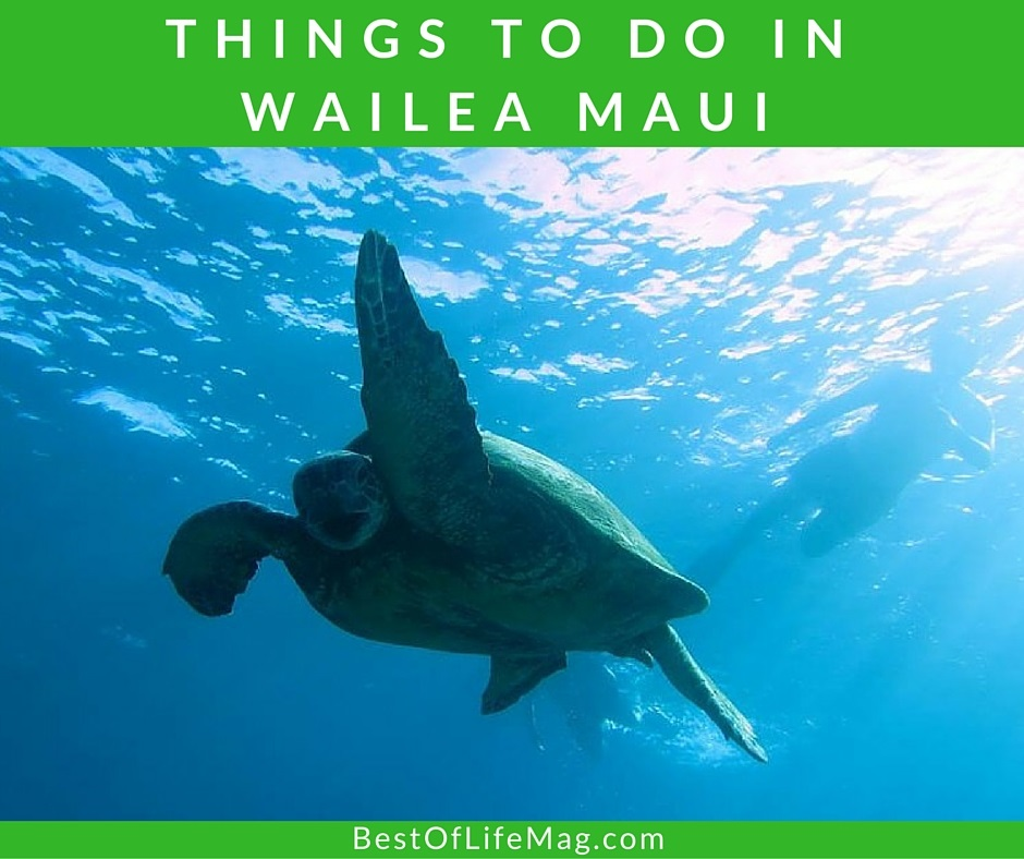 25 things to do in wailea maui year round   best of life
