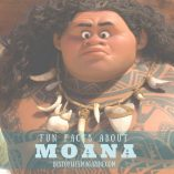 Fun Facts about Moana from Disney Animations