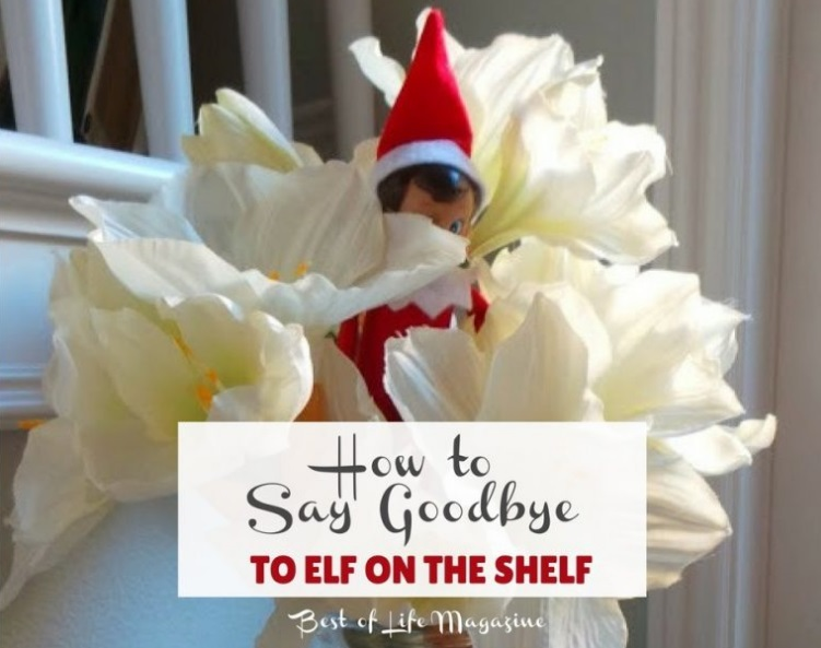 Hop online and find some of the best Elf on The Shelf ideas on Pinterest so you can make memories last for your child's lifetime.