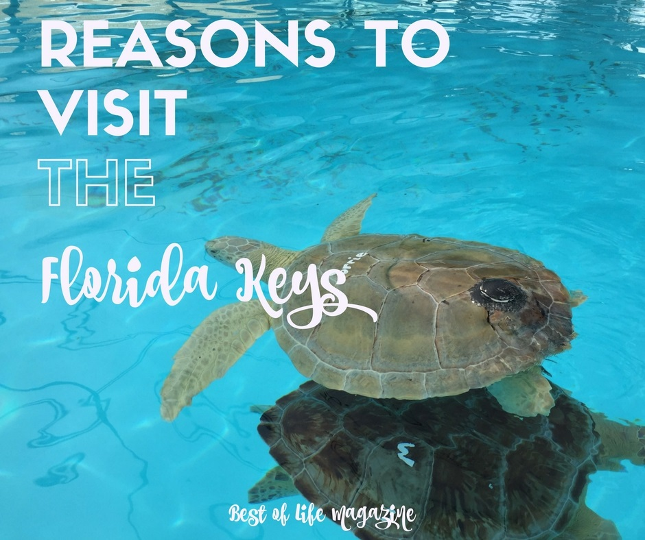 Best Places In Florida For Fishing: Reasons To Visit Florida Keys As A Travel Destination