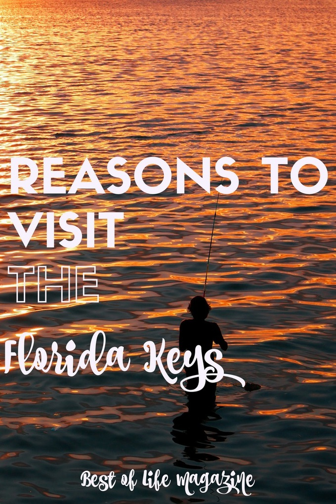 The reasons to visit Florida Keys extend far beyond the common reasons of fishing and snorkeling. Here is your guide to visiting Florida Keys!