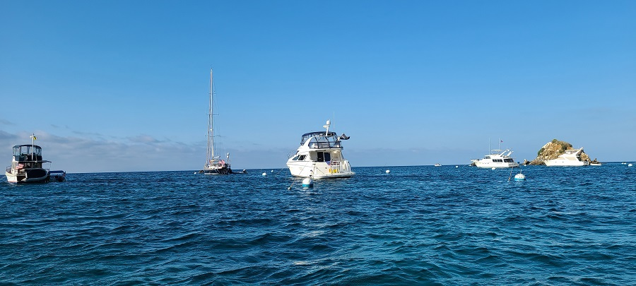 Catalina Island Boating Tips Boat in the Water