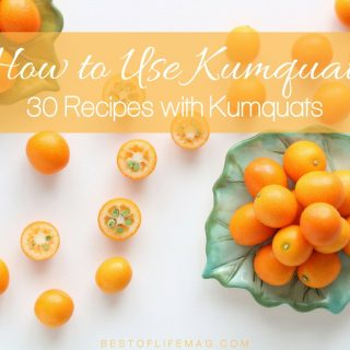 Recipes with kumquats introduce the world to a fruit that isn't as well known as the others but just as delicious as them all. What are Kumquats   Recipes that Use Kumquats   How to Use Kumquats