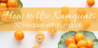 Recipes with kumquats introduce the world to a fruit that isn't as well known as the others but just as delicious as them all.