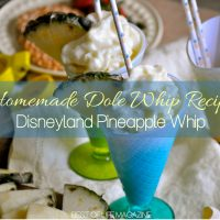 Making this homemade Dole Whip recipe is so easy, fun, and delicious that the hardest part will be sharing the Disneyland pineapple whip. How to Make Dole Whip | What is in Dole Whip | How to Make Disneyland Treats | Disneyland Recipes