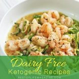If you are in need of some of the best dairy free ketogenic recipes to stay healthy and get healthier you should start your search right here. Diary Free Keto Recipes | Healthy Dairy Free Recipes | How to do Dairy Free Keto | What is Keto | What is Dairy Free
