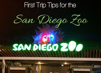 Don't let your first trip to the San Diego Zoo pass you by without knowing a few insider tips that will make you seem like a pro. San Diego Travel | Best Zoos in California | Things to do with Kids in Southern California | Best Things to Do in California | Southern California Travel Destinations
