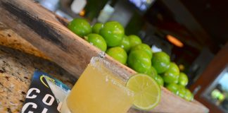 The best low carb skinny margarita recipes will let you forget the worries of drinking while watching calories so you can just enjoy the best skinny margaritas. #margaritas #happyhour #cocktails   Low Carb Margarita Recipes   Skinny Margarita Recipes   Best Low Carb Cocktail Recipes   Easy Skinny Cocktail Margaritas