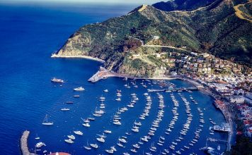 Use these Catalina Wine Mixer travel tips to make this popular Catalina Island event even more memorable. Catalina Island Travel Tips | What to do at The Catalina Island Wine Mixer | The Real Catalina Island Wine Mixer | Catalina Island Wine Mixer Step Brothers | Things to do on Catalina Island #Catalinaisland #winemixer #winetravel #travel