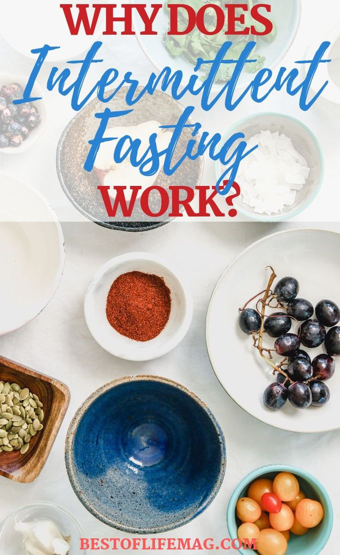 Why does intermittent fasting work? The short answer is it's a healthier approach to eating, but there is a lot of information that goes into that answer that will motivate you to stay dedicated to your IF plan. Weight Loss Tips | Diet Plans | Meal Prep Tips | Intermittent Fasting Tips | Weight Loss Tips #weightloss #health