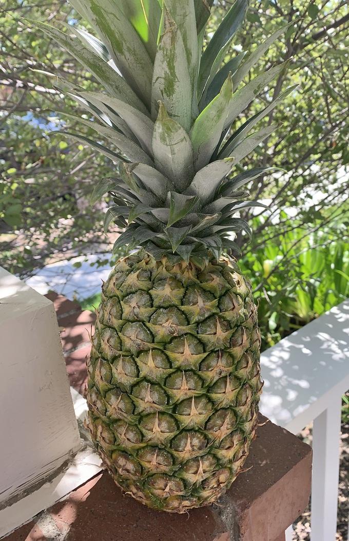 How to Make Fresh Pineapple Juice Pineapple