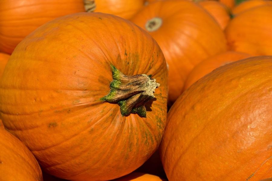 Crockpot Pumpkin Dump Cake Recipes a Pile of Pumpkins